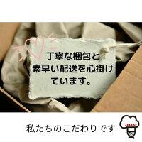 ゼラチンリーフ30g【板ゼラチン家庭用5袋までメール便対応ゼリエースゼリー】