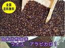 自家焙煎コーヒーラオス・アラビカ 400g コーヒー豆:【RCP】【HLS_DU】
