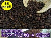 コーヒーミャンマーアラビカ