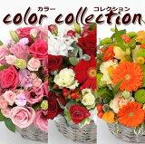 ジャスト4000円!お好きな色合いをお選び下さい♪お花屋さんにおまかせ!お祝い・お誕生日・結婚お祝・出産お祝・開店お祝・結婚記念日・お礼・発表会・成人式など。