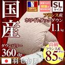 羽毛布団 日本製 フランス産ホワイトダックダウン85% シン...