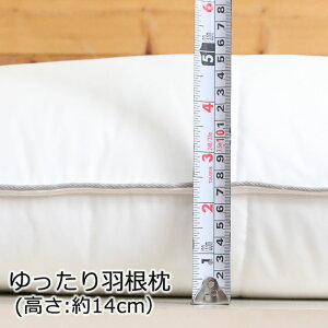 ホテル仕様ゆったり枕まくら45×75cm【Plus(パイピン2本):PL-2】【羽根枕:PL-3】(つぶ綿ふわふわまくらウォッシャブルピローホテルマクラホテル仕様大ホテル仕様のワイドまくら大きい枕ホテル仕様まくら枕カバー洗える肩こり長い)20P09Jan16