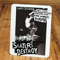 ステッカーフレイク(FLAKE)SkatersDestroy