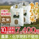 無農薬 無化学肥料 送料無料 玄米 10kg 5kg×2袋 食べる健康...