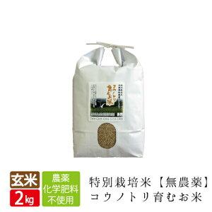 無農薬コウノトリ育むお米玄米1キロあたり