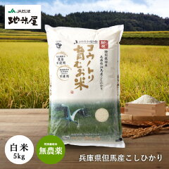 兵庫県 無農薬 無化学肥料 コウノトリ育む米 5kg / Hyogo Pesticide Chemical Fertilizer Free Growth with stork Rice 5Kg