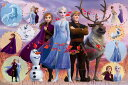 EPO-97-005 ディズニー Frozen 2 Collection (Frozen 2 コレクション) (アナと雪の女王) 1000ピース ジグソーパズル 【あす楽】[CP-D][CP-PD] パズル デコレーション パズデコ Puzzle Decoration 布パズル ギフト プレゼント