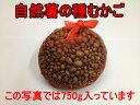 静岡県の天然種(在来種)のウィルスフリーの種むかご。大変希少なものです。原種芋の選抜を繰...