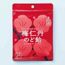 【森下仁丹公式】梅仁丹のど飴 60g(約17粒)5袋セット 梅肉エキス 梅肉 2