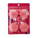 梅仁丹 のど飴 5袋セット【梅肉エキス】【梅肉】