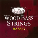 HWB1 ハルシュタット ウッドベース弦(1弦 G用) Halls...