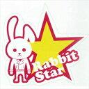 R808 東洋マーク ステッカー Rabbit star
