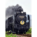 [鉄道模型]カトー (Nゲージ) 2016-8 D51 200 蒸気機関車 - Joshin web 家電とPCの大型専門店