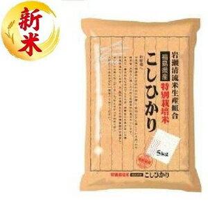 米・雑穀, 白米  5kg 5