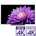 (標準設置料込_Aエリアのみ)65M540X 東芝 65型地上・BS・110度CSデジタル4Kチューナー内蔵 LED液晶テレビ (別売USB HDD録画対応)REGZA・・・