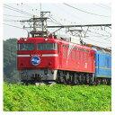 [鉄道模型]カトー (Nゲージ) 3066-8 EF81 北斗星色 - Joshin web 家電とPCの大型専門店