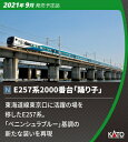 [鉄道模型]カトー (Nゲージ) 10-1613 E257系2000番台「踊り子」 9両セット