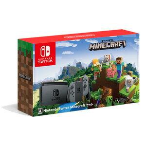 Nintendo Switch Minecraftセット 任天堂 [HAC-S-KAAGE NSW マインクラフトセット]【送料無料】