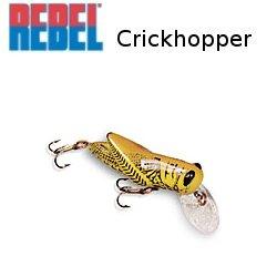 REBEL レーベル Crickhopper クリックホッパー F73