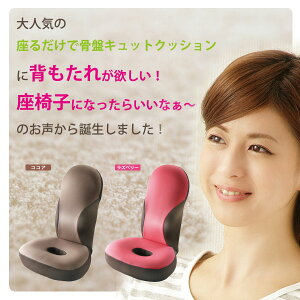 勝野式美姿勢習慣【骨盤矯正座椅子】