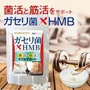 ◆ガセリ菌HMB 90粒◆[メール便対応商品]ガセリ菌 サプリメント 乳酸菌 HMB hmb サプリ クレアチン ダイエット時の栄養補給に 日本製