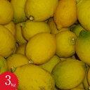 レモン【訳あり】減農薬有機栽培無添加天草レモン3kg入り天草オーガニックフルーツ酢・レモン酢に大活躍