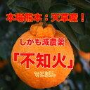 【訳あり】不知火5kg箱入り(4.5kg)