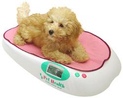 【ポイント10倍・送料無料】【SALE】≪体重計/犬猫兼用≫◎10g単位で細かく計測できる、ペット...