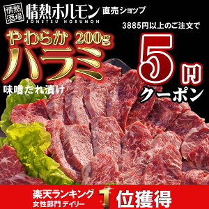 バーベキューセット 用、焼肉セット 用にぴったり!【クーポンご利用で5円!(3885円以上のご注...