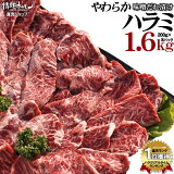 焼肉 ハラミ 超メガ盛セット やわらか ハラミ 味噌だれ漬け(1.6kg)(北海道・沖縄配送は別途送料追加) 焼肉セット 肉 バーベキュー 肉 バーベキューセット BBQ 肉