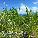 生黒糖 130g×3袋 無農薬・自然栽培さとうきび100%使用 純黒糖 黒砂糖 オーガニック 送料無料 3