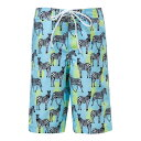 SNAPPER ROCK 【 ZEBRA CROSSING TRUE BOARD SHORTS BLUE 】 キッズ ベビー マタニティ 送料無料
