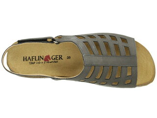 HaflingerMorgan