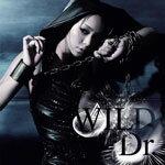 【送料無料】WILD/Dr./安室奈美恵[CD+DVD]【返品種別A】【smtb-k】【w2】