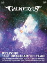 【送料無料】RELIVING THE IRONHEARTED FLAG/GALNERYUS[Blu-ray]【返品種別A】