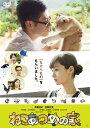 【送料無料】ねこあつめの家/伊藤淳史[DVD]【返品種別A】
