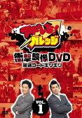 アドレな!ガレッジ 衝撃映像DVD 放送コードギリギリ(1)/ガレッジセール[DVD]【返品種別A】
