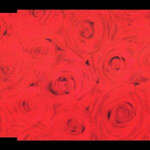涙のキッス/サザンオールスターズ[CD]【返品種別A】