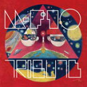m-flo TRIBUTE(仮)/m-flo[CD]