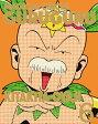【送料無料】[上新電機オリジナル全巻購入特典対象]魔法陣グルグル 6【DVD】[初回仕様]/アニメーション[DVD]【返品種別A】