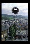 【送料無料_spsp1304】【送料無料】『惡の華』Blu-ray 第一巻/アニメーション[Blu-ray]【返品種...