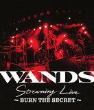 【送料無料】WANDS Streaming Live 〜BURN THE SECRET〜/WANDS[Blu-ray]【返品種別A】