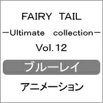 FAIRY TAIL -Ultimate collection- Vol.12/アニメーション