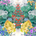 WONDERLAND/Novelbright[CD]【返品種別A】