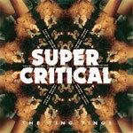 【送料無料】SUPER CRITICAL【輸入盤】▼/THE TING TINGS[CD]【返品種別A】