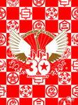 【送料無料】真夏の大感謝祭 LIVE/サザンオールスターズ[DVD]【返品種別A】