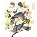 【送料無料】小鳥観察 Kotringo Best/コトリンゴ[CD]【返品種別A】