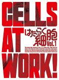 [限定版]はたらく細胞 1(完全生産限定版)/アニメーション[DVD]【返品種別A】