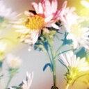 シオン(通常盤A)/Plastic Tree[CD]【返品種別A】