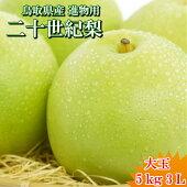 送料無料二十世紀梨鳥取県二十世紀梨東郷秀品5kg3L(12〜14玉)
